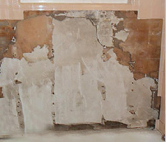 Mold Growth Behind Bathroom Tile Before