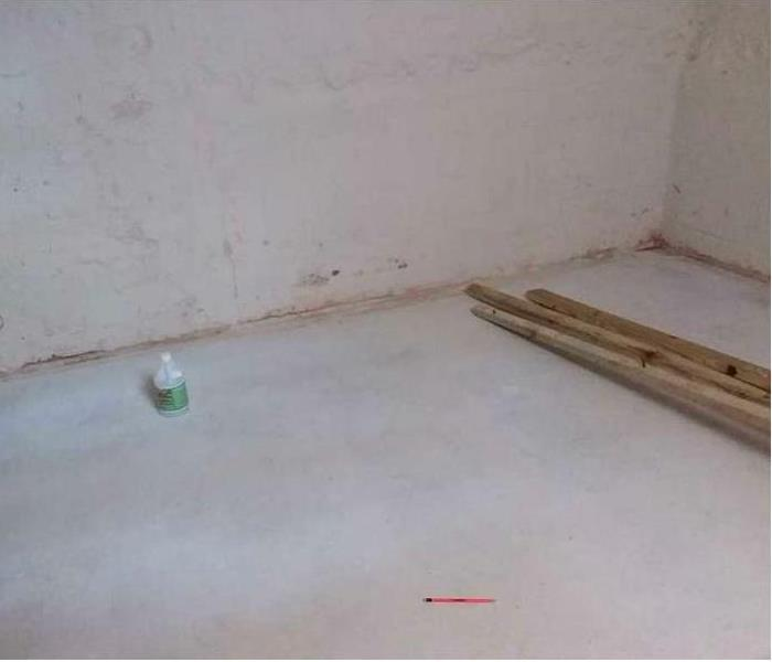 Basement Cleanup and Mold Removal  After