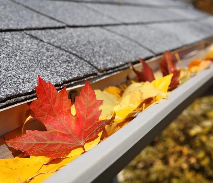 General Two Easy Home Maintenance Tasks to Prepare for Fall and Prevent Water Damage