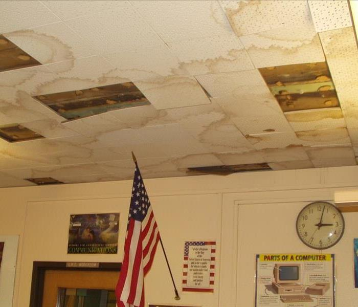 Mold Remediation Schools Exposed to Mold