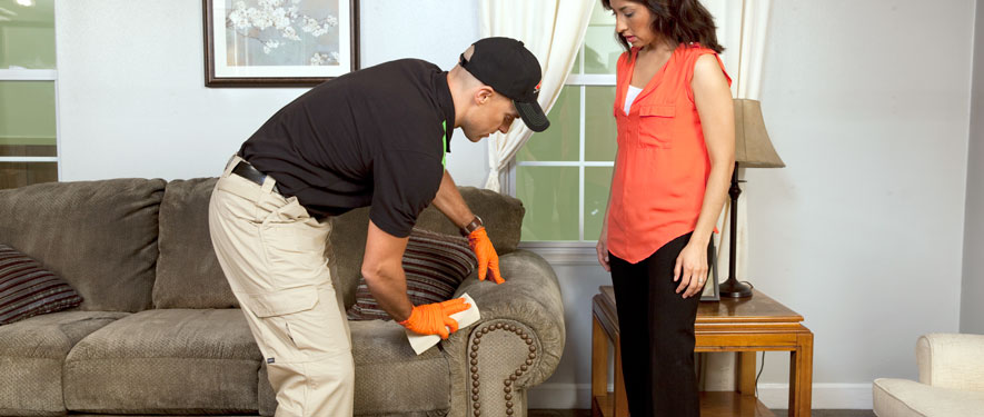 Burlington, NJ carpet upholstery cleaning